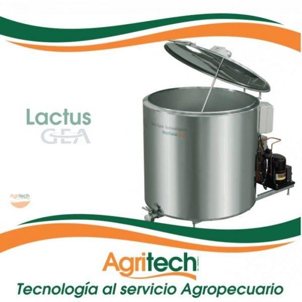 Lactus